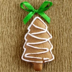 Biscotti Allo Zenzero Di Natale.Biscotti Di Natale Allo Zenzero Nuova Terra