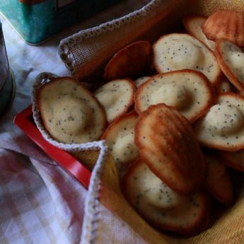 ricetta Madeleines al mosto e semi di papavero
