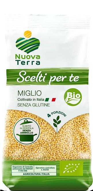 ricette con Miglio Bio Coltivato in Italia