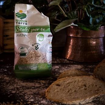 ricetta Pane integrale di farine miste con chicchi di avena bio