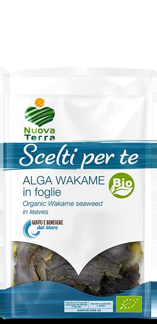 ricette con Alga Wakame foglie Bio